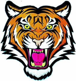 LARGE 10 INCH SIZE BENGAL ANGRY TIGER iron-on PATCH Embroide